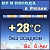 Ну и погода в Рязани - Поминутный прогноз погоды